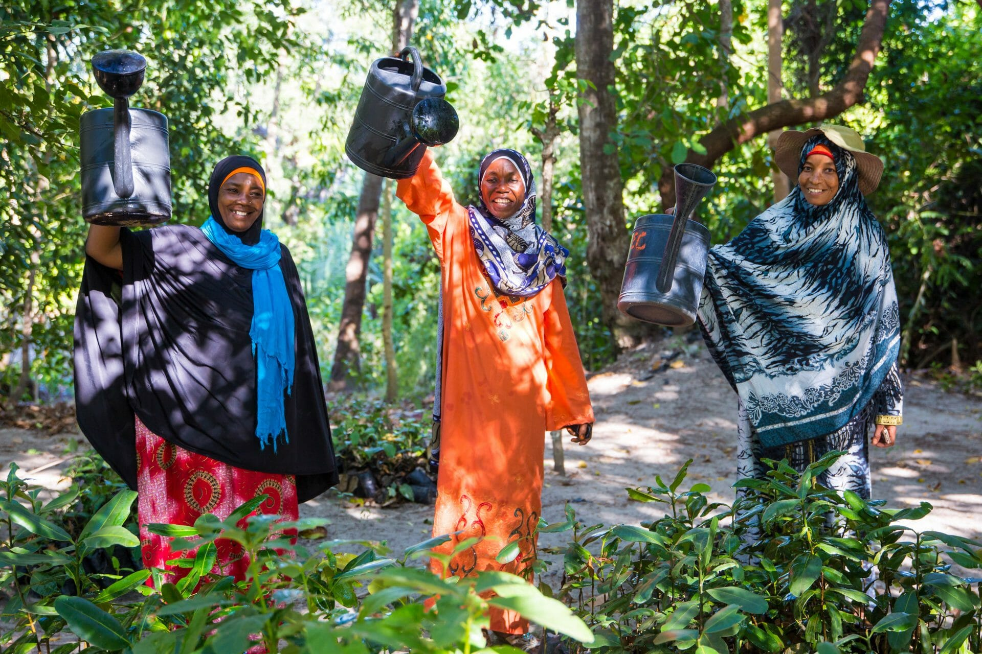 Three women wearing colourful dresses and scarves hold up their watering cans with enthusiasm. They are standing in a forest and tending to young tree seedlings.