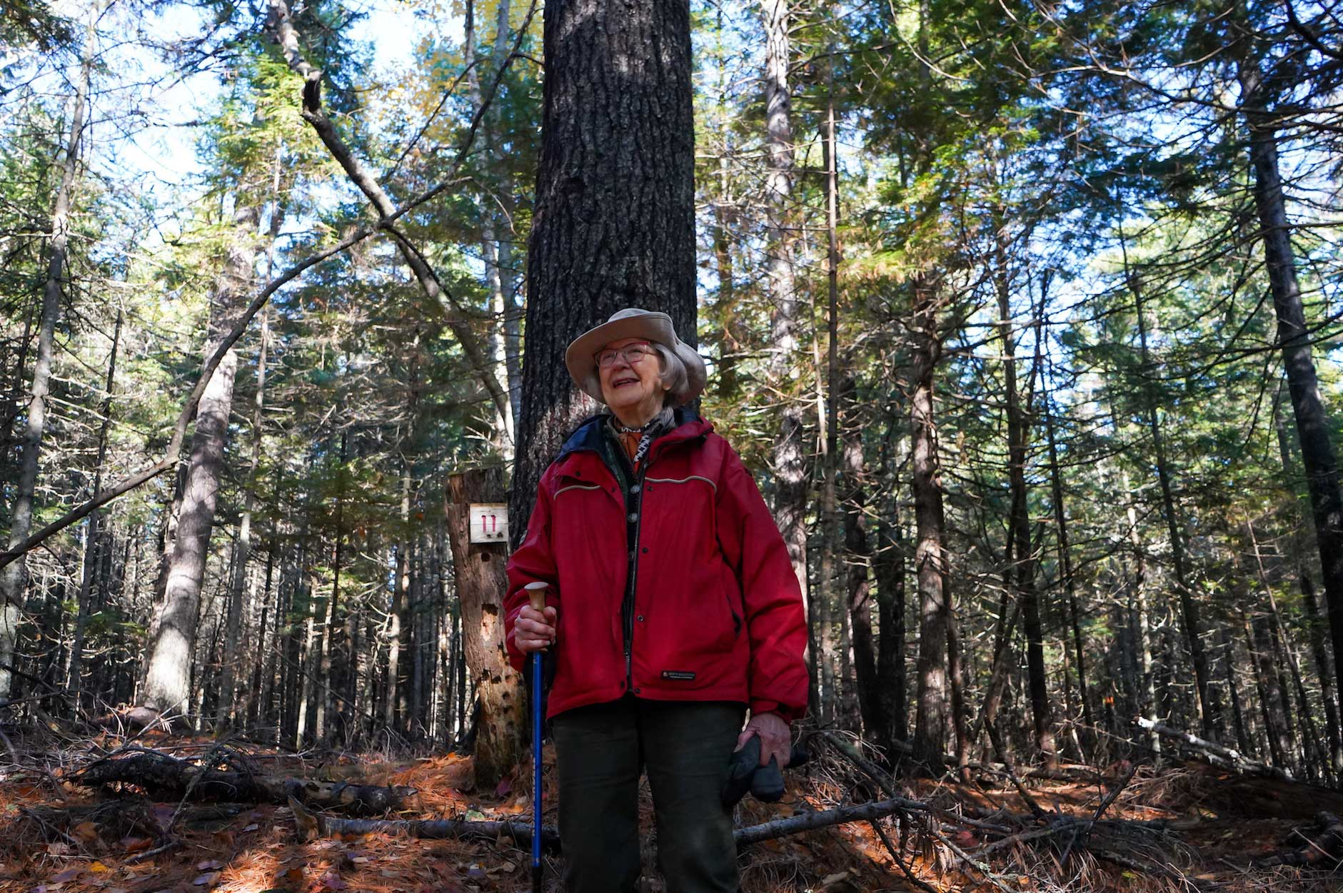 Robena Weatherly stands in front of a pine tree in her forest.