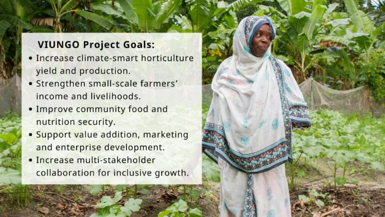 The VIUNGO Project Goals - Increase climate-smart horticulture yield and production. - Strengthen small-scale farmers' income and livelihoods. - Improve community food and nutrition security. - Support value addition, marketing, and enterprise development. - Increase multi-stakeholder collaboration for inclusive growth.The VIUNGO Project Goals - Increase climate-smart horticulture yield and production. - Strengthen small-scale farmers' income and livelihoods. - Improve community food and nutrition security. - Support value addition, marketing, and enterprise development. - Increase multi-stakeholder collaboration for inclusive growth.
