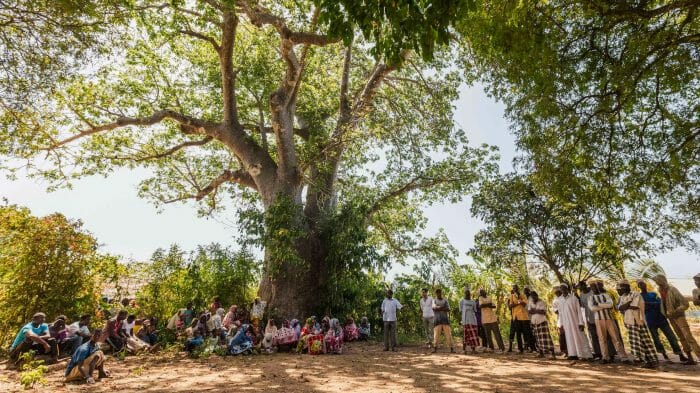 The community in Pemba gathers under a tree in the shade.