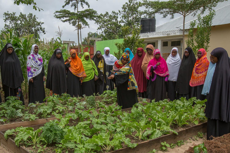 Women farmers in kitchen garden